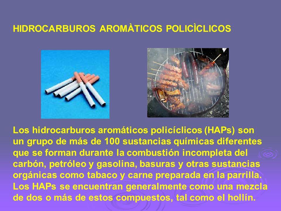 HIDROCARBUROS AROMÀTICOS POLICÌCLICOS