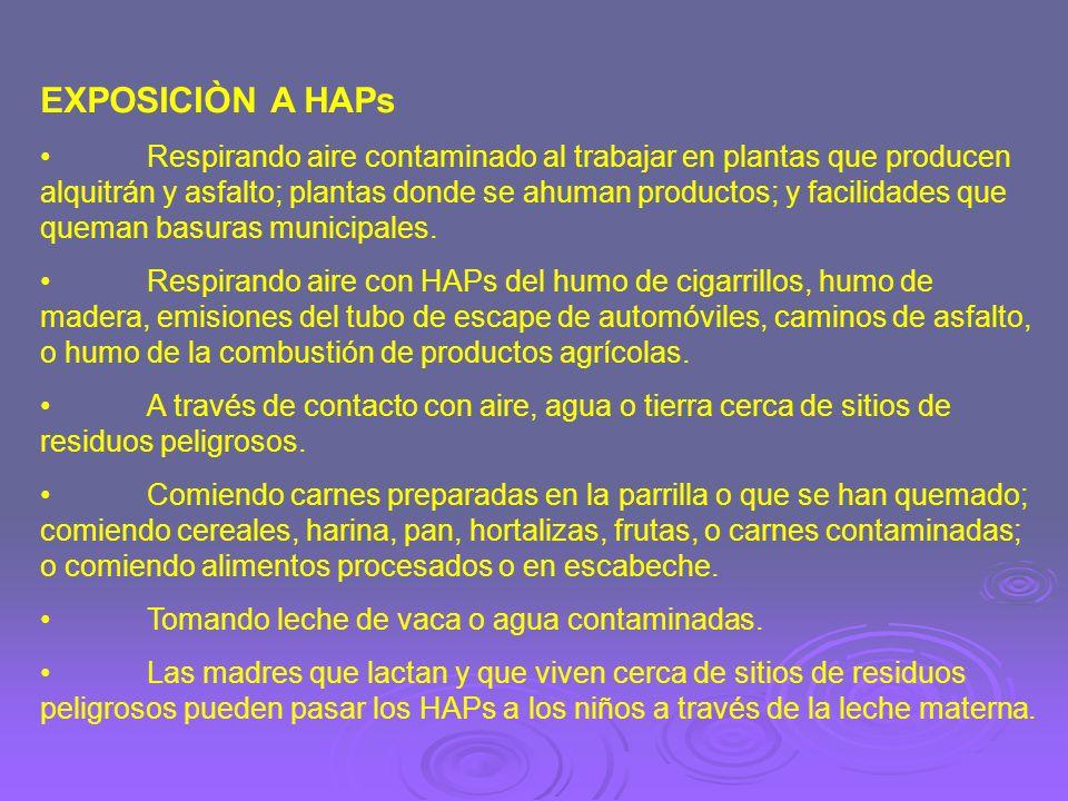 EXPOSICIÒN A HAPs