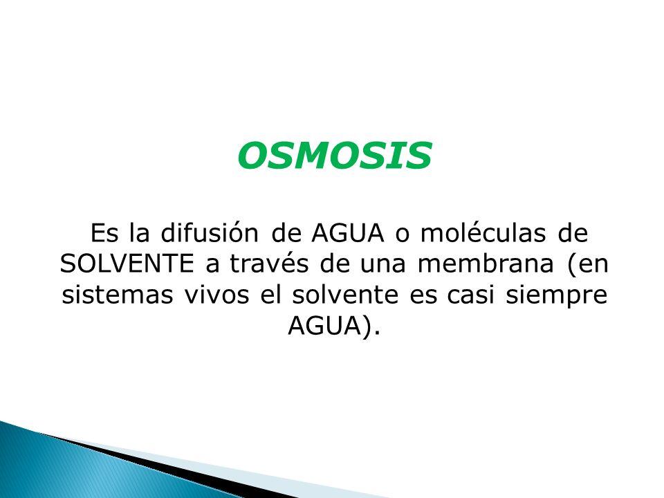 OSMOSISEs la difusión de AGUA o moléculas de SOLVENTE a través de una membrana (en sistemas vivos el solvente es casi siempre AGUA).