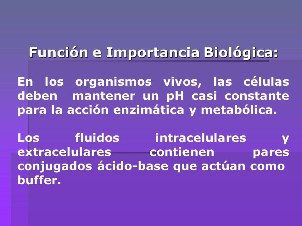 Función e Importancia Biológica: