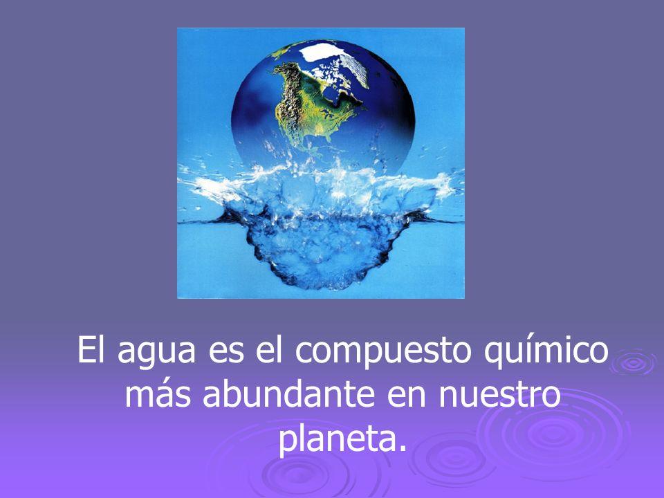 El agua es el compuesto químico más abundante en nuestro planeta.