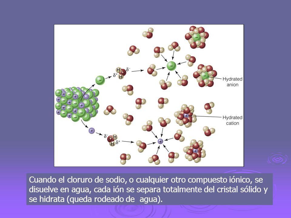 Cuando el cloruro de sodio, o cualquier otro compuesto iónico, se disuelve en agua, cada ión se separa totalmente del cristal sólido y se hidrata (queda rodeado de agua).