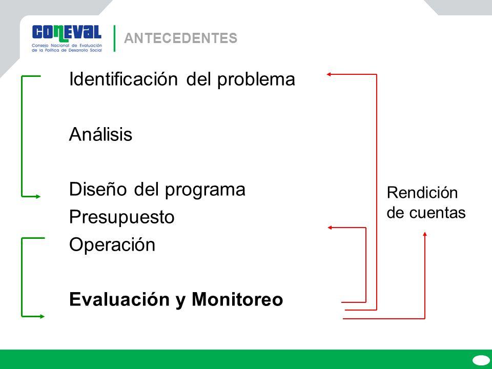 Identificación del problema Análisis Diseño del programa Presupuesto