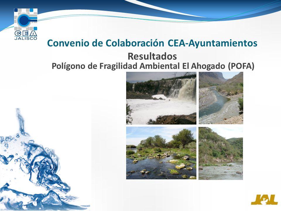 Convenio de Colaboración CEA-Ayuntamientos Resultados