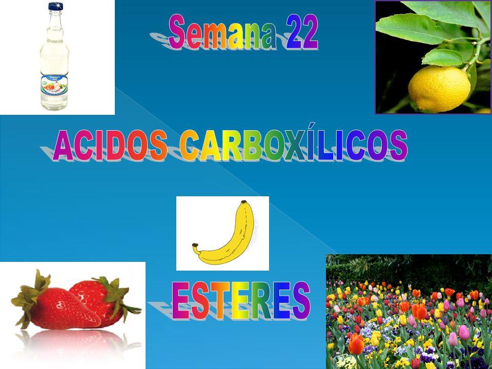 Semana 22 ACIDOS CARBOXÍLICOS ESTERES