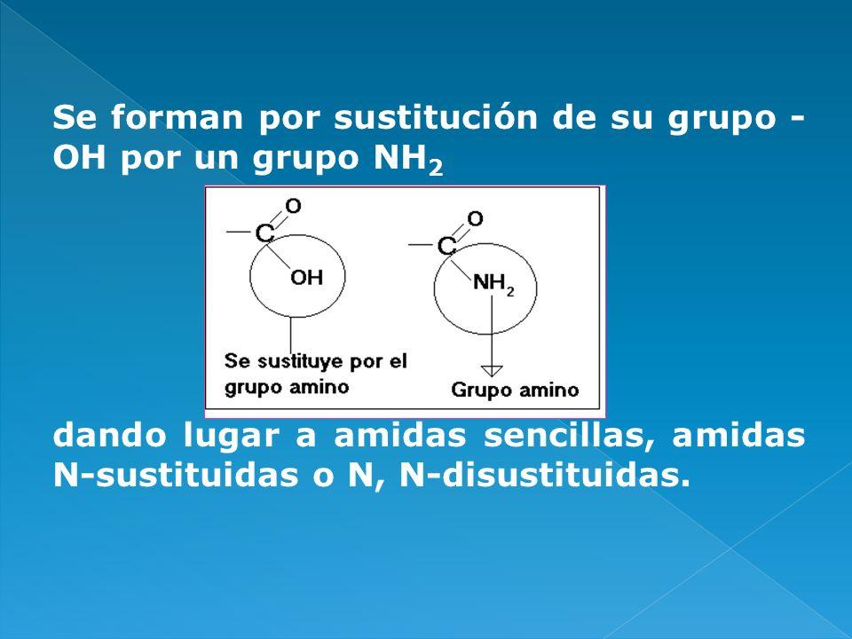 Se forman por sustitución de su grupo -OH por un grupo NH2