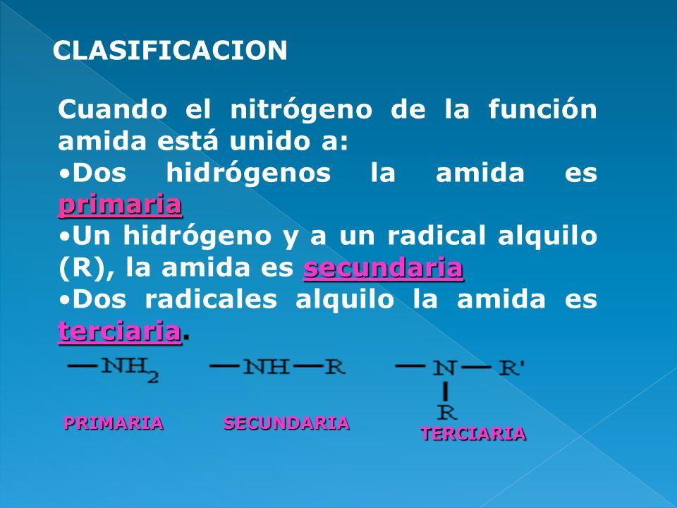 Cuando el nitrógeno de la función amida está unido a: