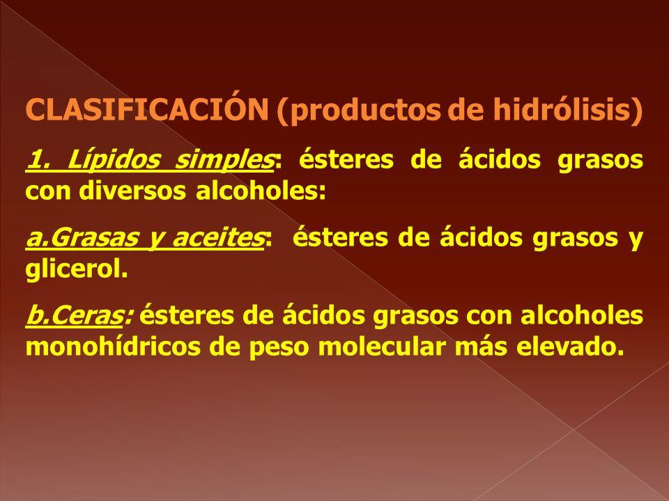 CLASIFICACIÓN (productos de hidrólisis)