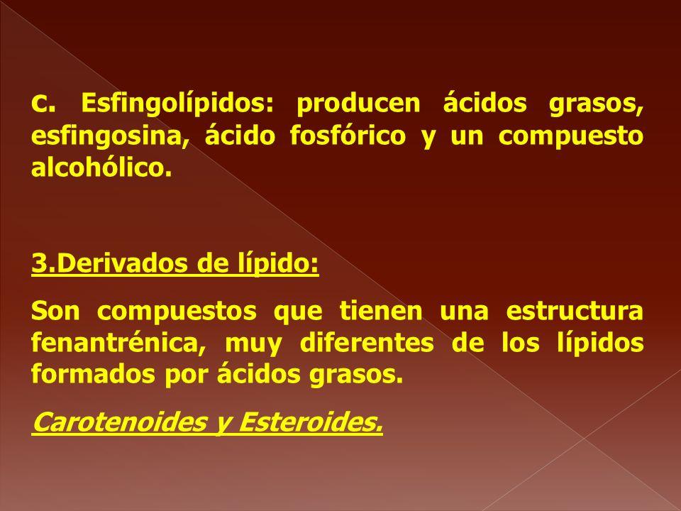 c. Esfingolípidos: producen ácidos grasos, esfingosina, ácido fosfórico y un compuesto alcohólico.