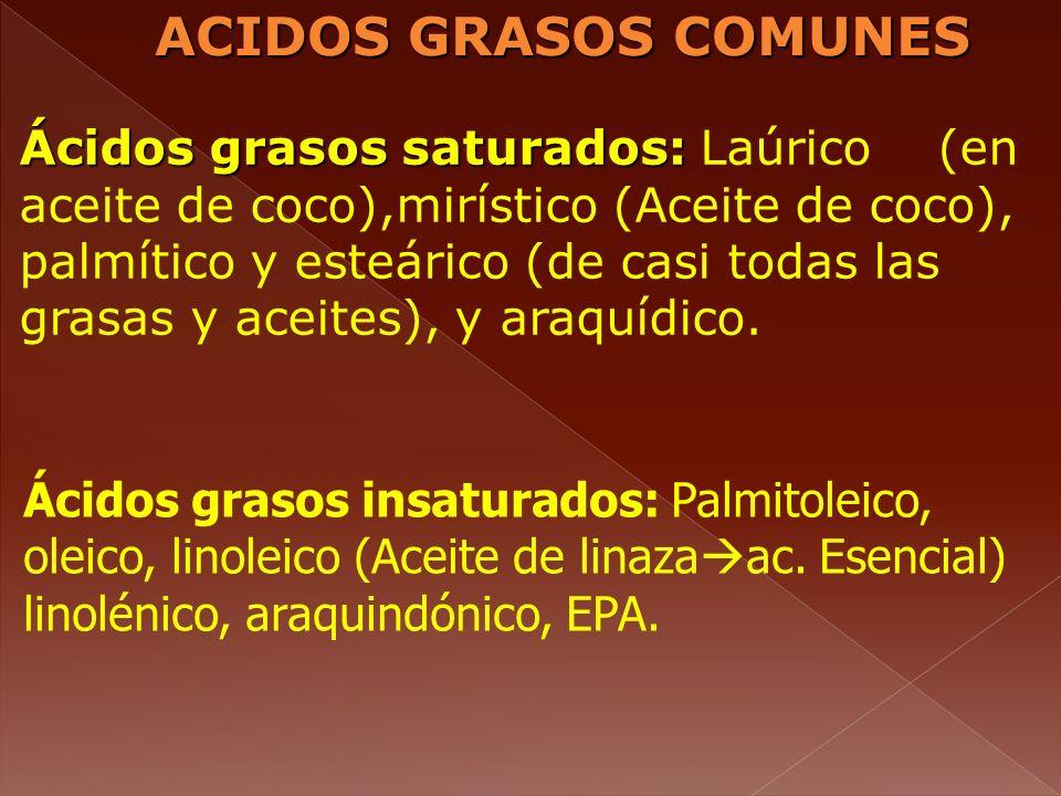 ACIDOS GRASOS COMUNES