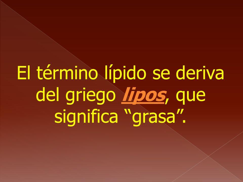 El término lípido se deriva del griego lipos, que significa grasa .