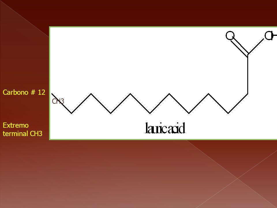 Carbono # 1 Carbono # 12 CH3 Extremo terminal CH3