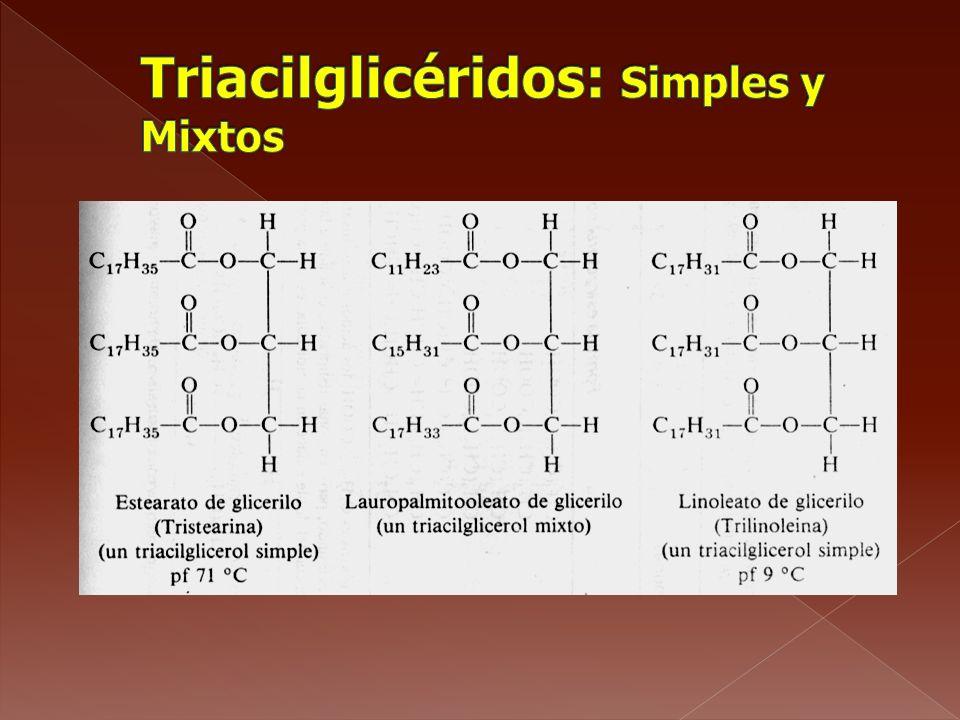 Triacilglicéridos: Simples y Mixtos