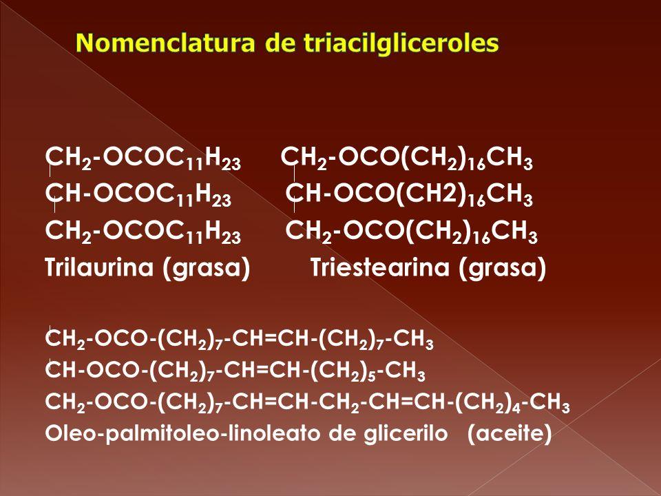 Nomenclatura de triacilgliceroles