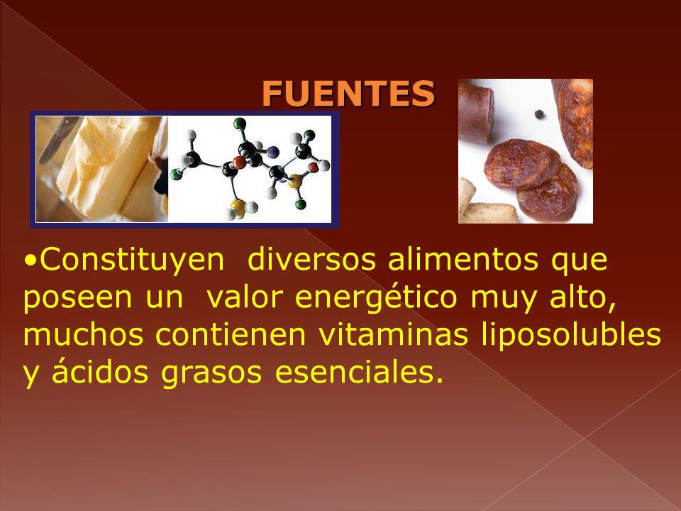 FUENTES Constituyen diversos alimentos que poseen un valor energético muy alto, muchos contienen vitaminas liposolubles y ácidos grasos esenciales.