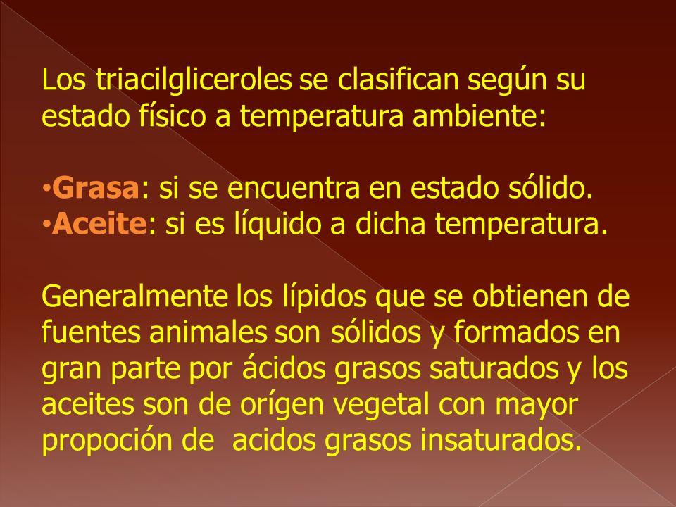 Los triacilgliceroles se clasifican según su estado físico a temperatura ambiente:
