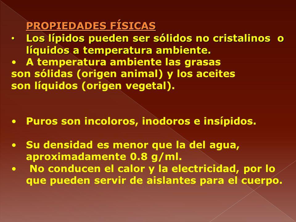 PROPIEDADES FÍSICAS Los lípidos pueden ser sólidos no cristalinos o líquidos a temperatura ambiente.