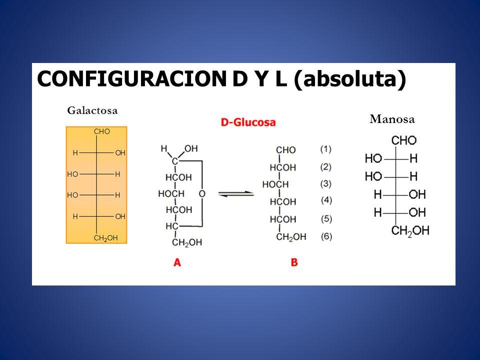CONFIGURACION D Y L (absoluta)