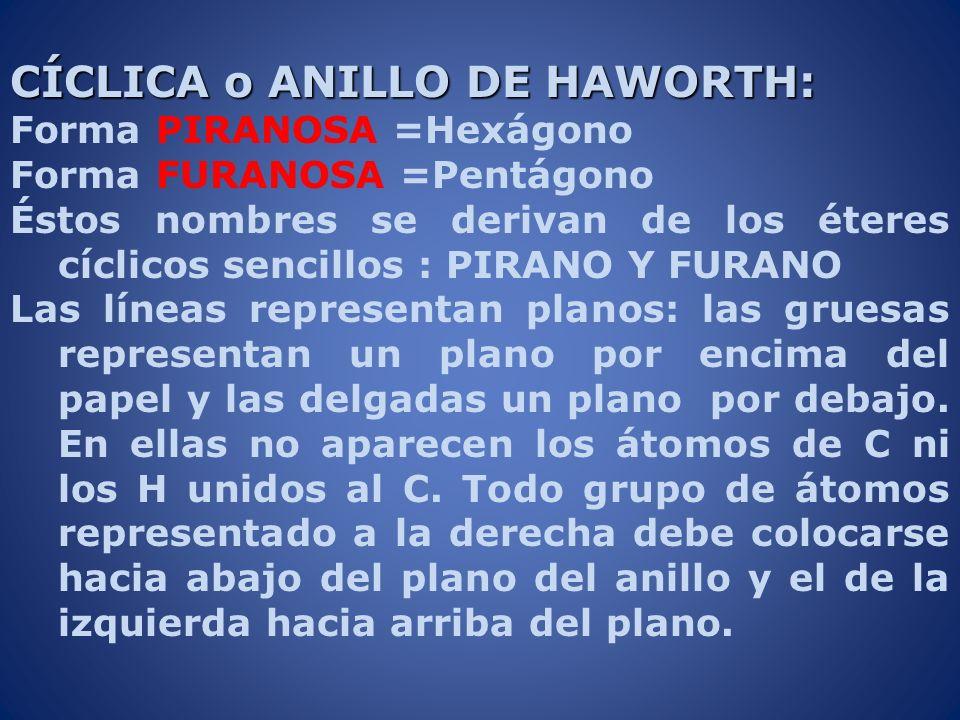 CÍCLICA o ANILLO DE HAWORTH: