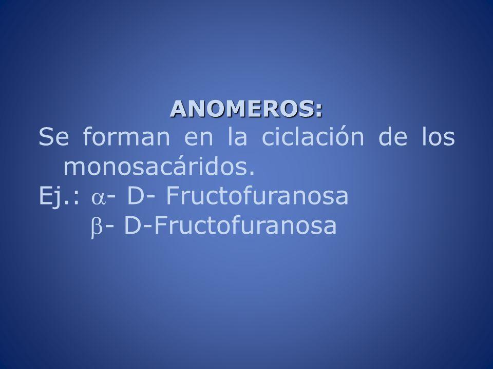 Se forman en la ciclación de los monosacáridos.