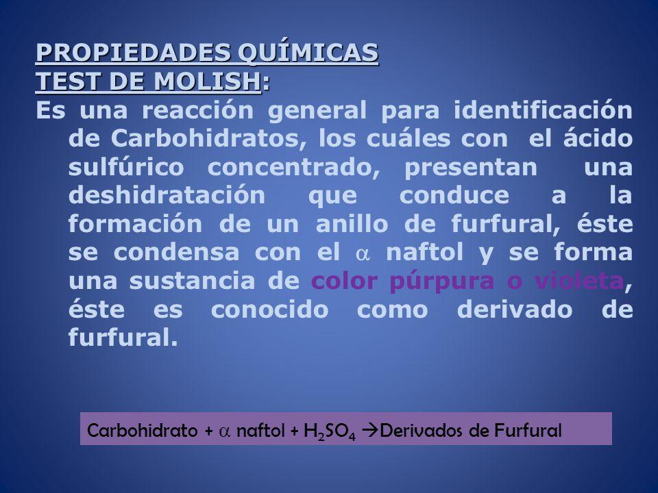 PROPIEDADES QUÍMICAS TEST DE MOLISH: