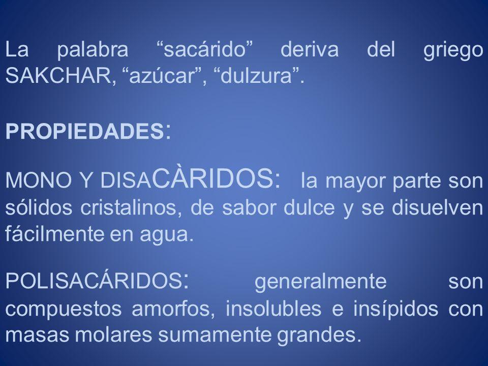 La palabra sacárido deriva del griego SAKCHAR, azúcar , dulzura .