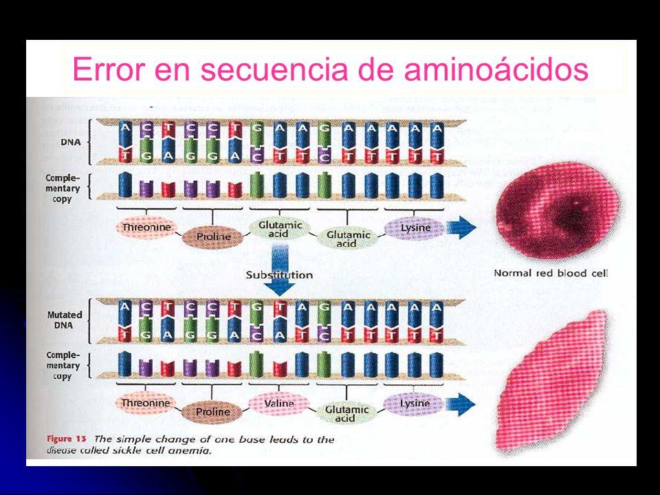 Error en secuencia de aminoácidos