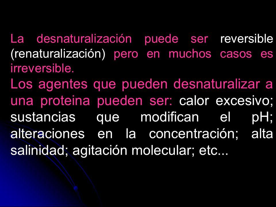 La desnaturalización puede ser reversible (renaturalización) pero en muchos casos es irreversible.