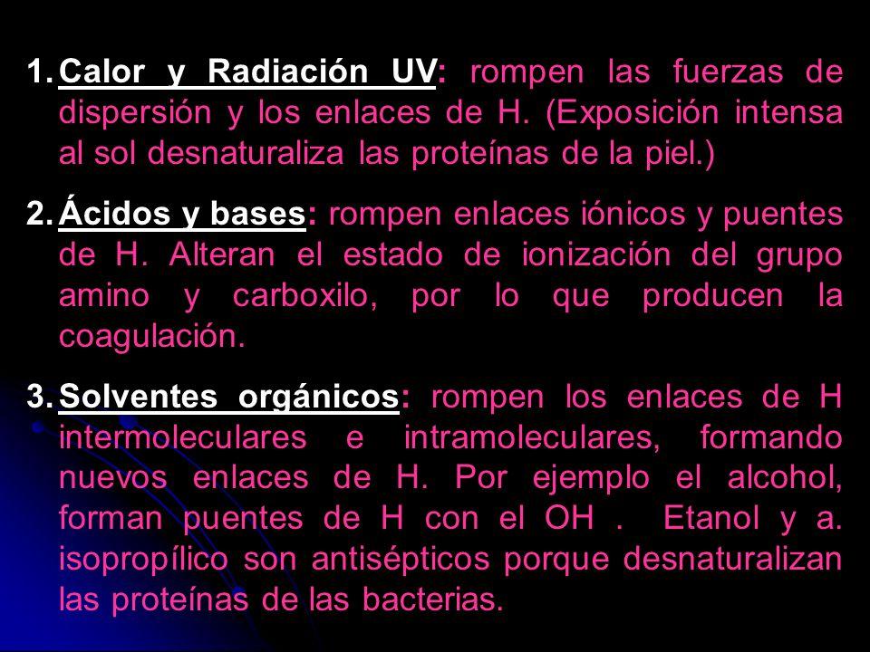 Calor y Radiación UV: rompen las fuerzas de dispersión y los enlaces de H. (Exposición intensa al sol desnaturaliza las proteínas de la piel.)