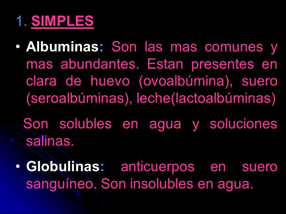 1. SIMPLES