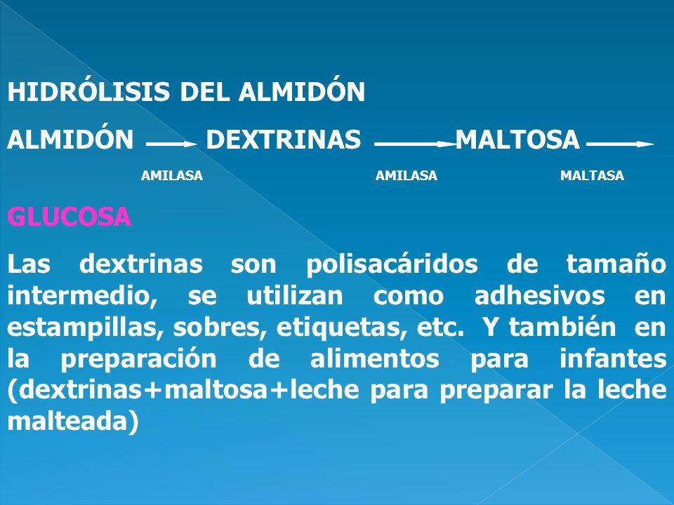 HIDRÓLISIS DEL ALMIDÓN ALMIDÓN DEXTRINAS MALTOSA GLUCOSA