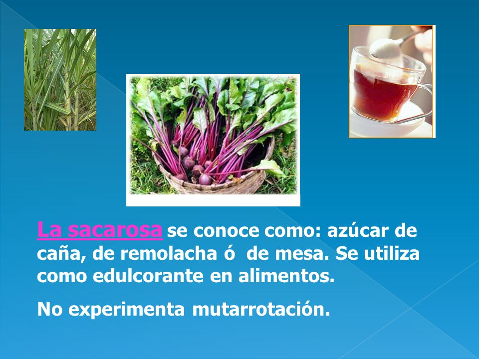 La sacarosa se conoce como: azúcar de caña, de remolacha ó de mesa