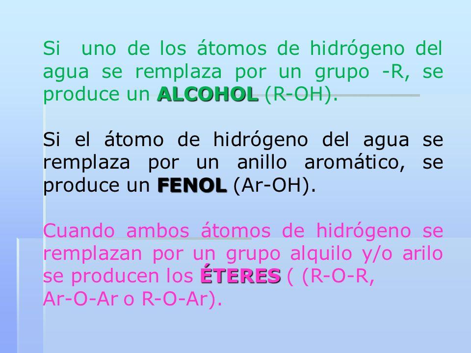 Si uno de los átomos de hidrógeno del agua se remplaza por un grupo -R, se produce un ALCOHOL (R-OH).