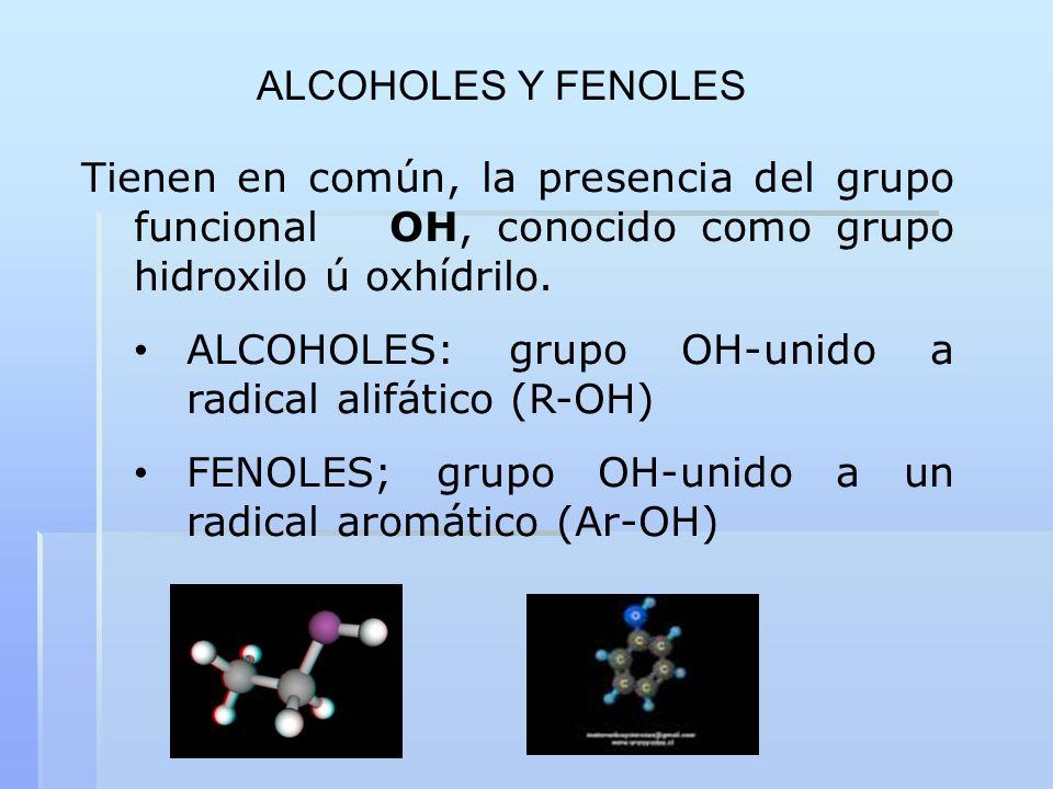 ALCOHOLES Y FENOLES Tienen en común, la presencia del grupo funcional OH, conocido como grupo hidroxilo ú oxhídrilo.