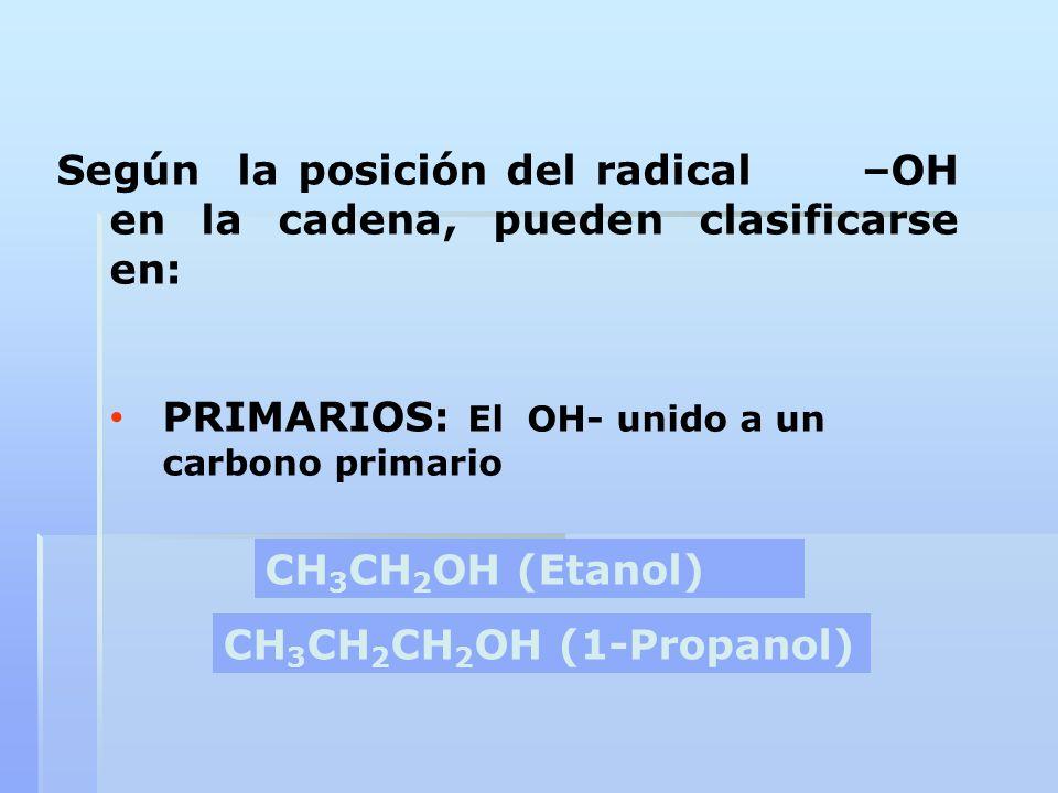 Según la posición del radical –OH en la cadena, pueden clasificarse en:
