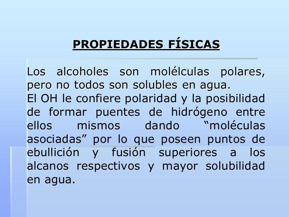 PROPIEDADES FÍSICASLos alcoholes son molélculas polares, pero no todos son solubles en agua.