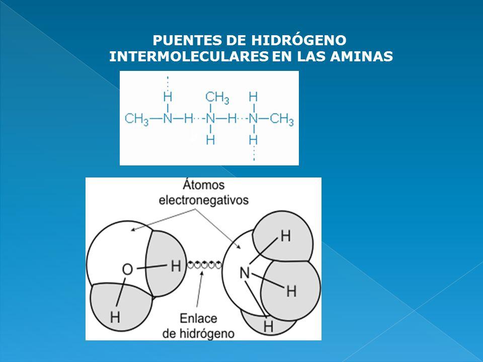 INTERMOLECULARES EN LAS AMINAS