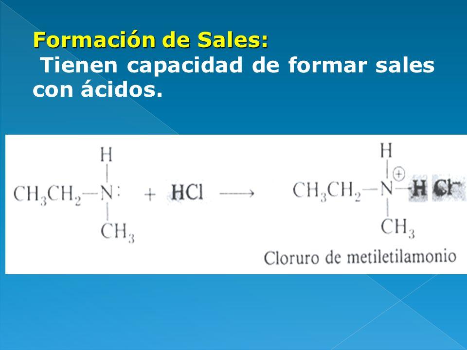 Formación de Sales: Tienen capacidad de formar sales con ácidos.
