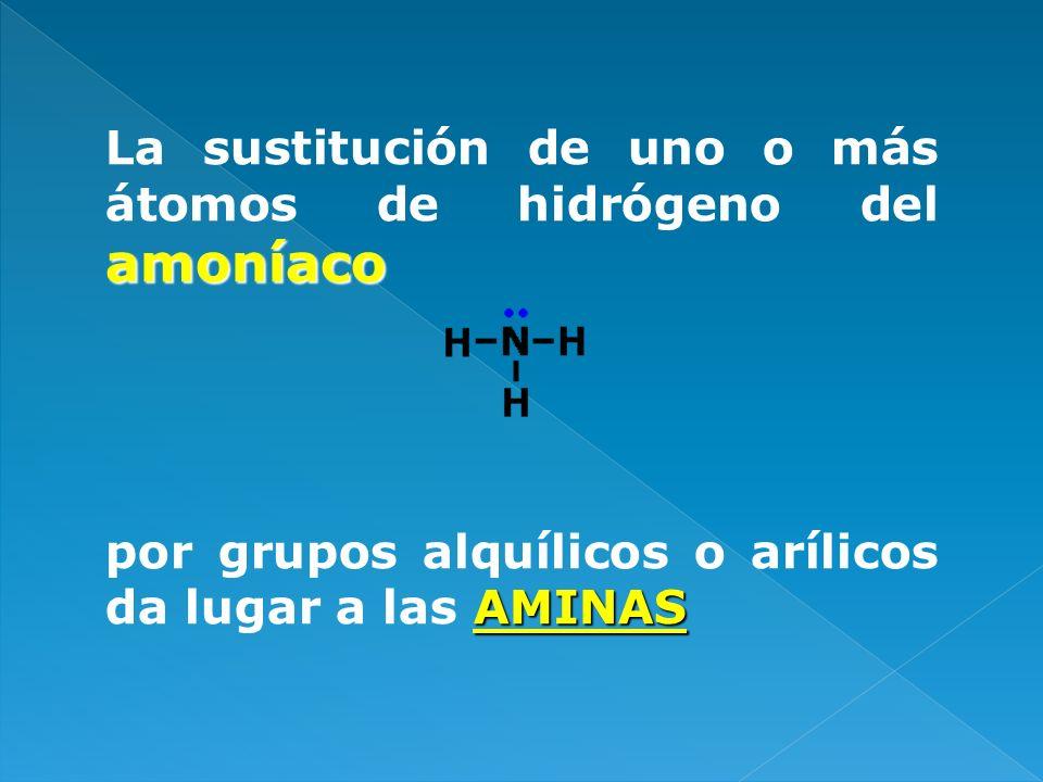 La sustitución de uno o más átomos de hidrógeno del amoníaco