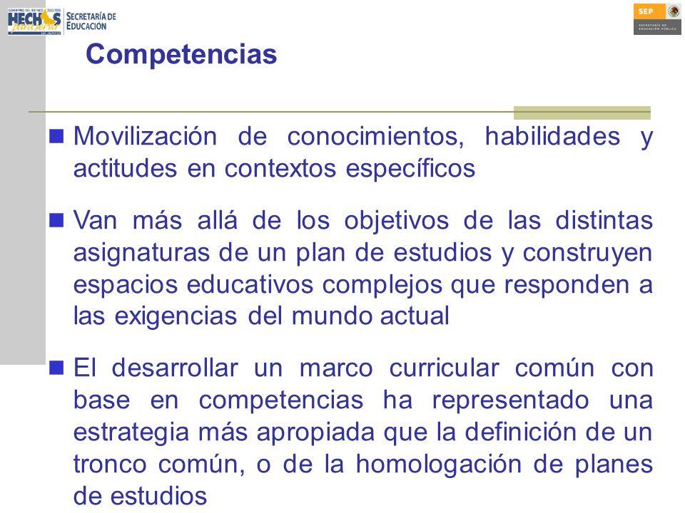 Competencias Movilización de conocimientos, habilidades y actitudes en contextos específicos.