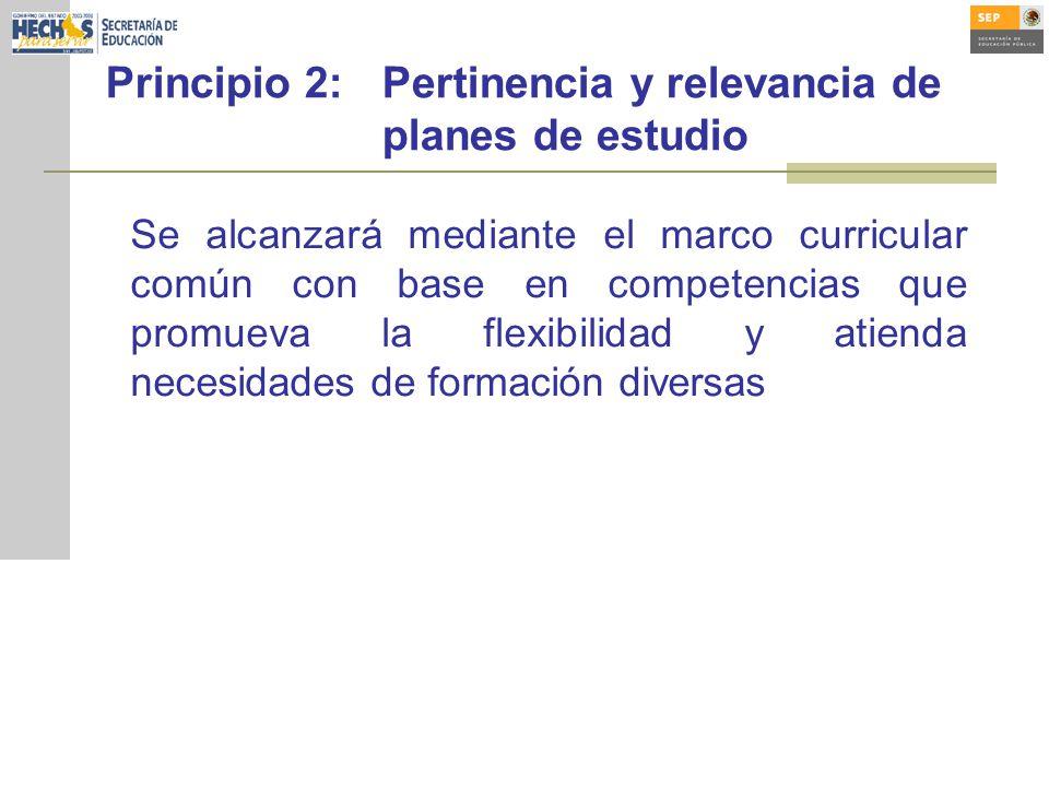 Principio 2: Pertinencia y relevancia de planes de estudio