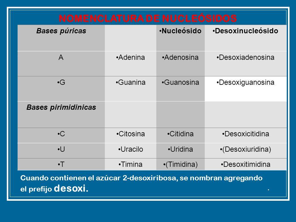 NOMENCLATURA DE NUCLEÓSIDOS
