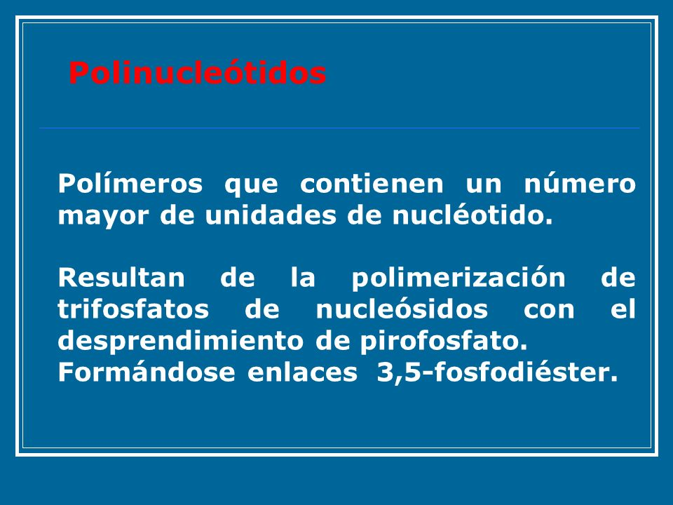 Polinucleótidos Polímeros que contienen un número mayor de unidades de nucléotido.
