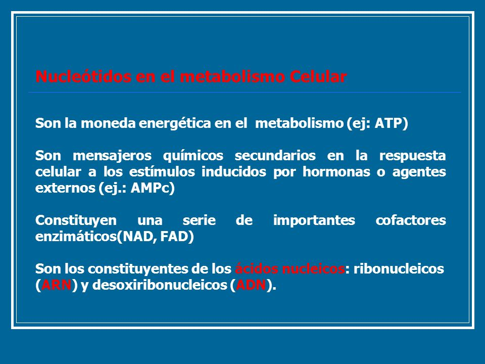 Nucleótidos en el metabolismo Celular