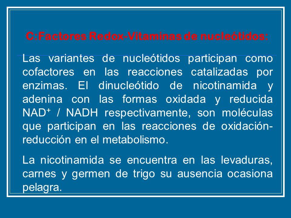 C:Factores Redox-Vitaminas de nucleótidos: