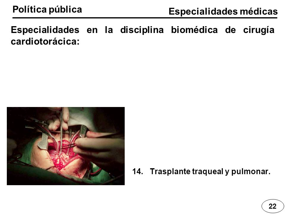 Especialidades médicas