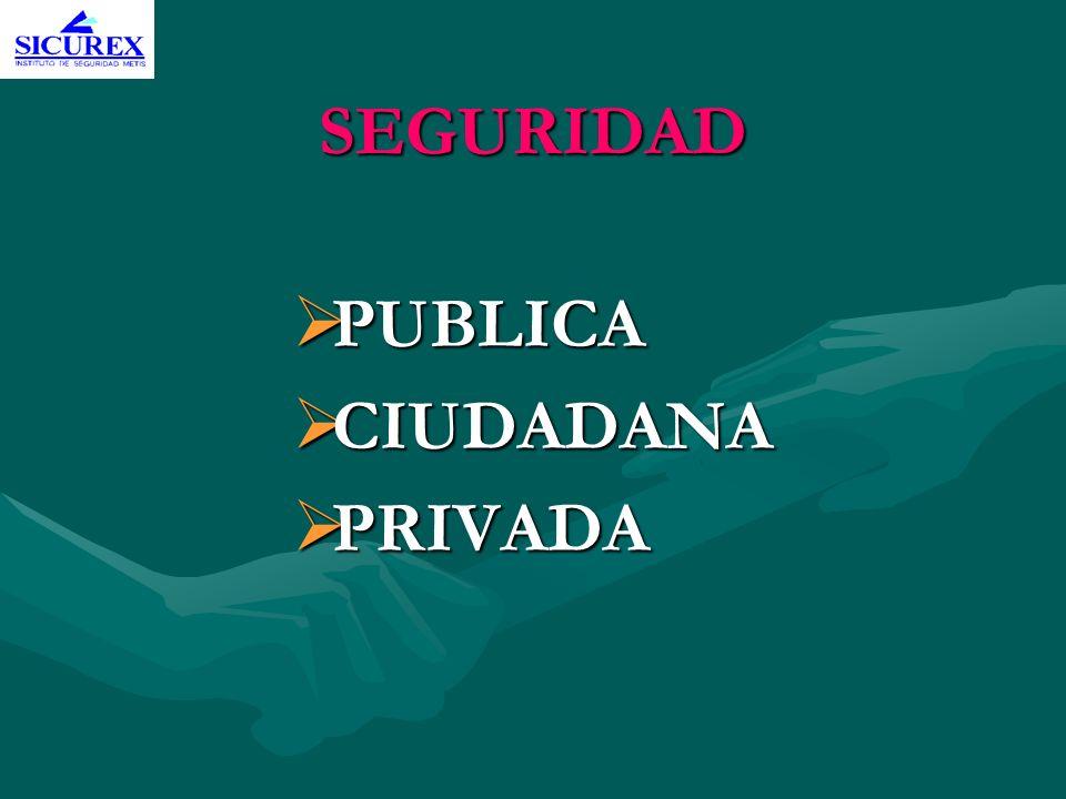 SEGURIDAD PUBLICA CIUDADANA PRIVADA