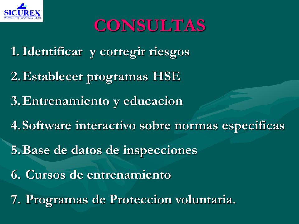 CONSULTAS Identificar y corregir riesgos Establecer programas HSE