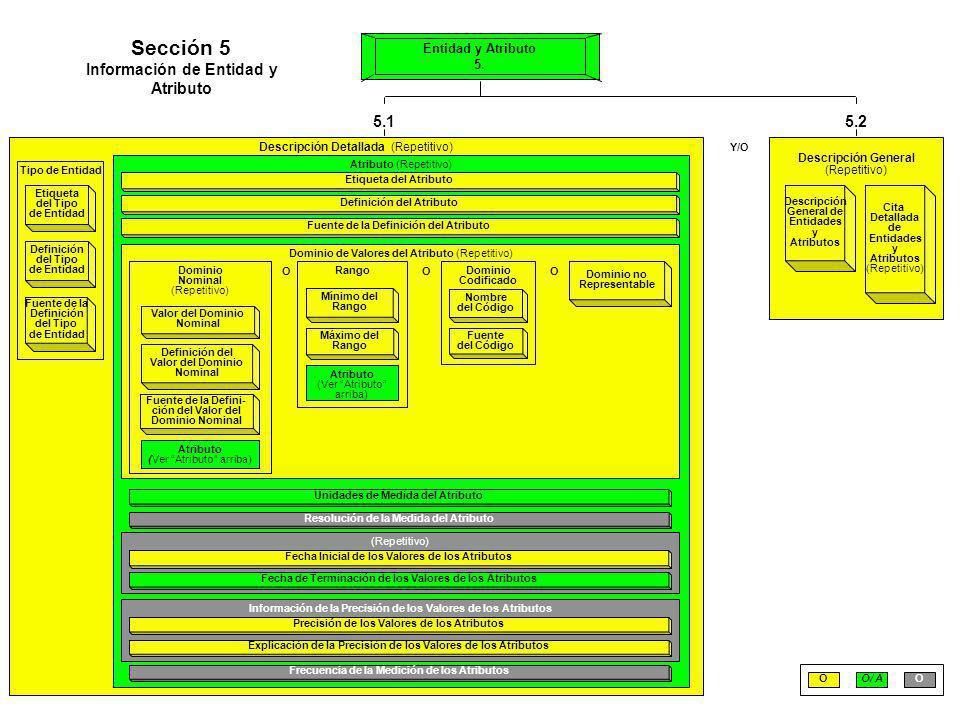 Sección 5 Información de Entidad y Atributo 5.1 5.2 Entidad y Atributo