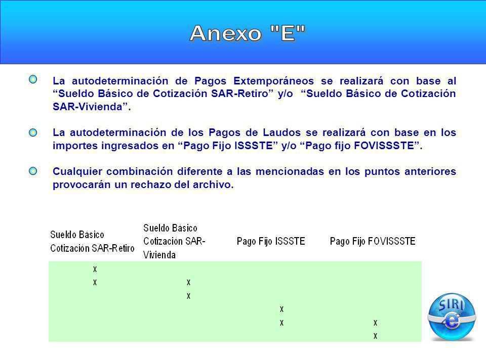 Anexo E